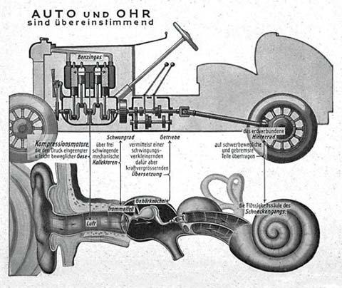 La obra de Fritz Kahn El auto y el oído concuerdan (1929).