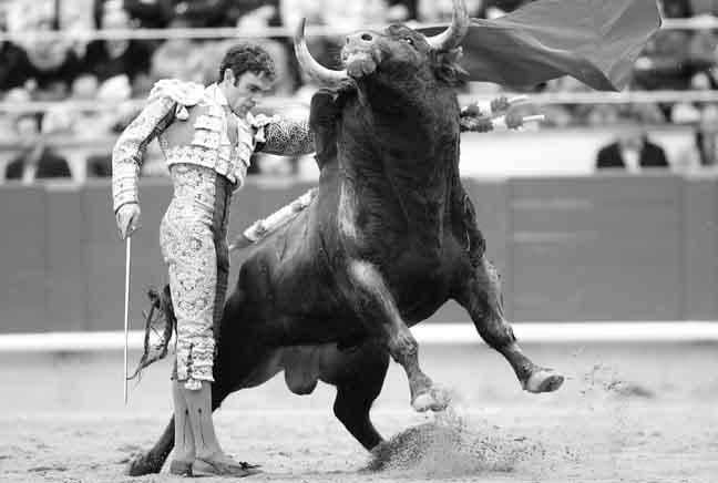 Cataluña y la lengua de los toros.