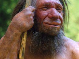 Contra el culto neandertal